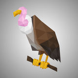 Low poly vulture. Vector illustration in polygonal style. Beautiful forest bird on gray background Stock Photo