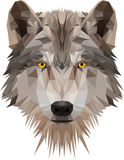 Low poly wolf's head Royalty Free Stock Photo