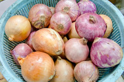 Low price Yellow and Red onions in blue basket . Close up stock photo