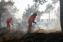 Low scale fire at a Seich Sou forest - Thessaloniki, Greece Stock Photos