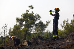 Low scale fire at a Seich Sou forest - Thessaloniki, Greece Royalty Free Stock Images