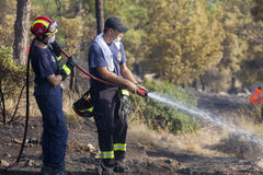 Low scale fire at a Seich Sou forest - Thessaloniki, Greece Royalty Free Stock Photography