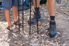 Low section of father and son with hiking poles in forest Stock Photos