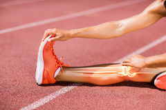 Low section of female athlete stretching on track royalty free stock photos