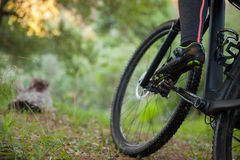 Low section of female mountain biker riding bicycle Royalty Free Stock Photo