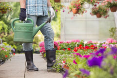 Low section of man holding watering can at greenhouse Stock Image