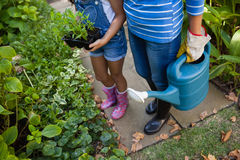 Low section of senior woman and granddaughter holding watering can Royalty Free Stock Images