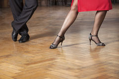 Low Section Of Tango Professionals Performing In Cafe. Low section of tango professionals performing on hardwood floor in cafe Stock Image