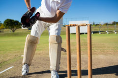 Low section of wicket keeper standing by stumps during match. On sunny day stock photos