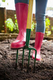 Low section of woman wearing pink rubber boot standing with fork on dirt Stock Photo