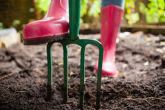 Low section of woman wearing pink rubber boot standing with gardening fork on dirt. At backyard Stock Photography
