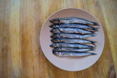 Low side view of small silver fish in a beige plate on a wooden table, close up royalty free stock photography