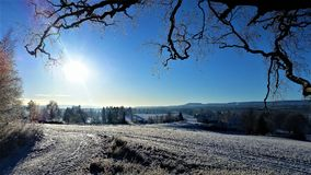 Low sun in hedmark county norway. winter wonderland. Blue sky and clear air stock image