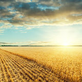 Low sun under clouds and harvesting field Royalty Free Stock Photography