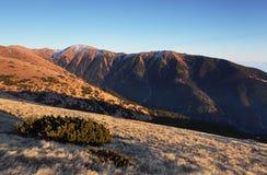 Low Tatras at autumn Stock Images