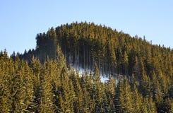 Low Tatras in Jasna.  Slovakia Royalty Free Stock Photo