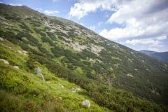 Low Tatras mountains, Slovakia Stock Photos