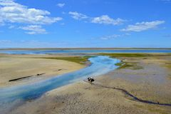 Low tide. In a sunny day. The shot has been taken in Algarve, Portugal royalty free stock image
