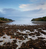 Low Tide. Acadia National Park, Maine Royalty Free Stock Photos