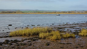 Low Tide At Topsham Royalty Free Stock Photography