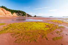 Low Tide in the Bay of Fundy reveals ocean floor. Five Islands Provincial Park: View of the Bay of Fundy at low tide Stock Photos