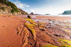 Low Tide in the Bay of Fundy reveals ocean floor. Five Islands Provincial Park: View of the Bay of Fundy at low tide Royalty Free Stock Photo