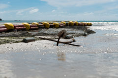 Low tide beach bouy line for swimming area. Bouy line for swimming area at Haad Rin, Koh Phangan, Thailand with clear blue sea and beautiful sky Royalty Free Stock Photo