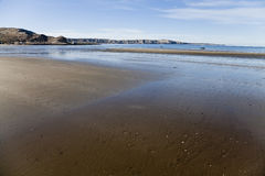 Low tide at a beach in Peninsula Valdes. Argentina Royalty Free Stock Photo