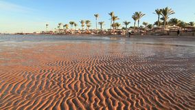Low tide on the beach during sunset. Egypt. Low tide on the beach during sunset stock video