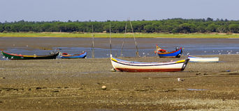 Low tide boats. Small coloured fishing boats on the low tide mud over Tagus river Stock Photos