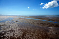Low tide at Cairns Stock Photos