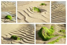 Low Tide Collage, Mauritius Stock Photo