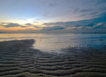Low Tide at Dawn Royalty Free Stock Images