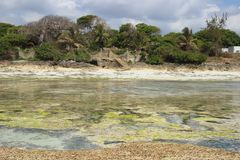 Low tide on Diani Beach, the coast of the Indian Ocean. Kenya stock image