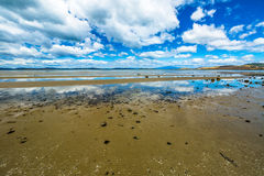 Low tide at Dunalley Tasmania Royalty Free Stock Images