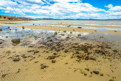 Low tide at Dunalley Tasmania Royalty Free Stock Photos