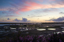 Low tide and dusk in Faro stock photos