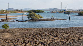 Low tide in the estuary Royalty Free Stock Photo