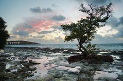 Sunrise over reef island. Royalty Free Stock Photo