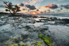 Sunrise over reef island. Stock Photos