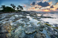 Sunrise over reef island. Royalty Free Stock Photo