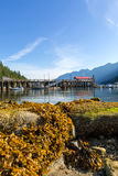 Low Tide at Horseshoe Bay Canada on a Sunny Day. Low tide at Horseshoe Bay in British Columbia Canada on a blue sky sunny day stock photo