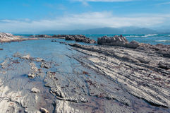 Low tide at Kaikoura, New Zealand Royalty Free Stock Photos
