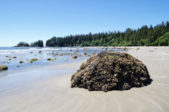 Low tide on the Long Beach.  Vancouver Island, Canada Royalty Free Stock Photography