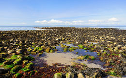 Low tide, Luce bay, Scotland. The rock strewn beach at low tide, on the edge of Luce bay, in Southern Scotland. Luce bay is an excellent area for sea angling Stock Image