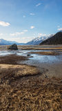 Low Tide Meandering Stock Image