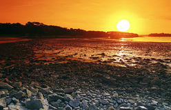 Low tide in Morbihan coast Stock Image