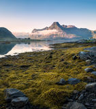 Low tide with mountain. Low tide at peaceful summer evening in Lofoten, Norway Royalty Free Stock Photos