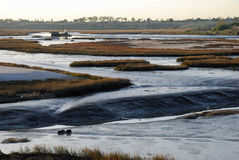 Low tide at Newport Beach (California) back bay/wetland/estuary. Low tide at the back bay wetland at Newport Beach California reveals the mud flats of this Stock Image