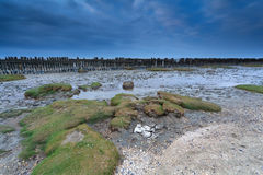 Low tide on North sea in Friesland Royalty Free Stock Photos